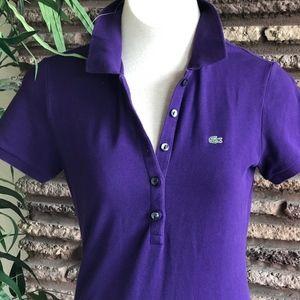 Lacoste Purple Pique Knit Cotton Polo Shirt